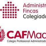 administración colegiada